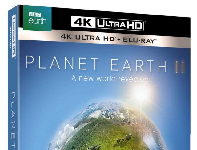 Planet Earth II Season 1 Episode 06 Cities 4K BluRay REMUX