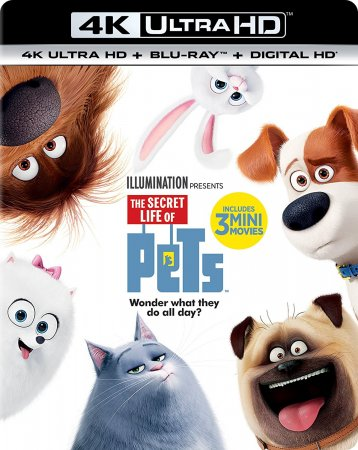 The Secret Life of Pets Blu-Ray 4K HEVC UHD 2160P