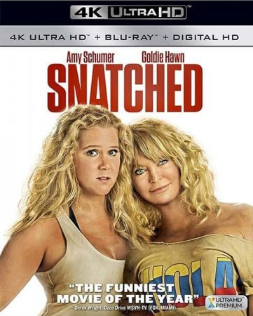 Snatched 4K (2017) Ultra HD 2160p REMUX