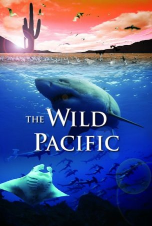 The Wild Pacific 4K (2016) Ultra HD 2160p REMUX
