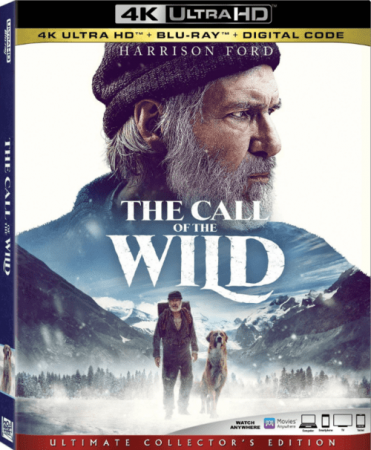 The Call of the Wild 4K 2020 Ultra HD 2160p